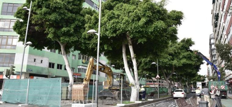 """El PP afirma que los nuevos retrasos en las obras de la ciudad evidencian la """"nula capacidad de gestión"""" de Hidalgo"""