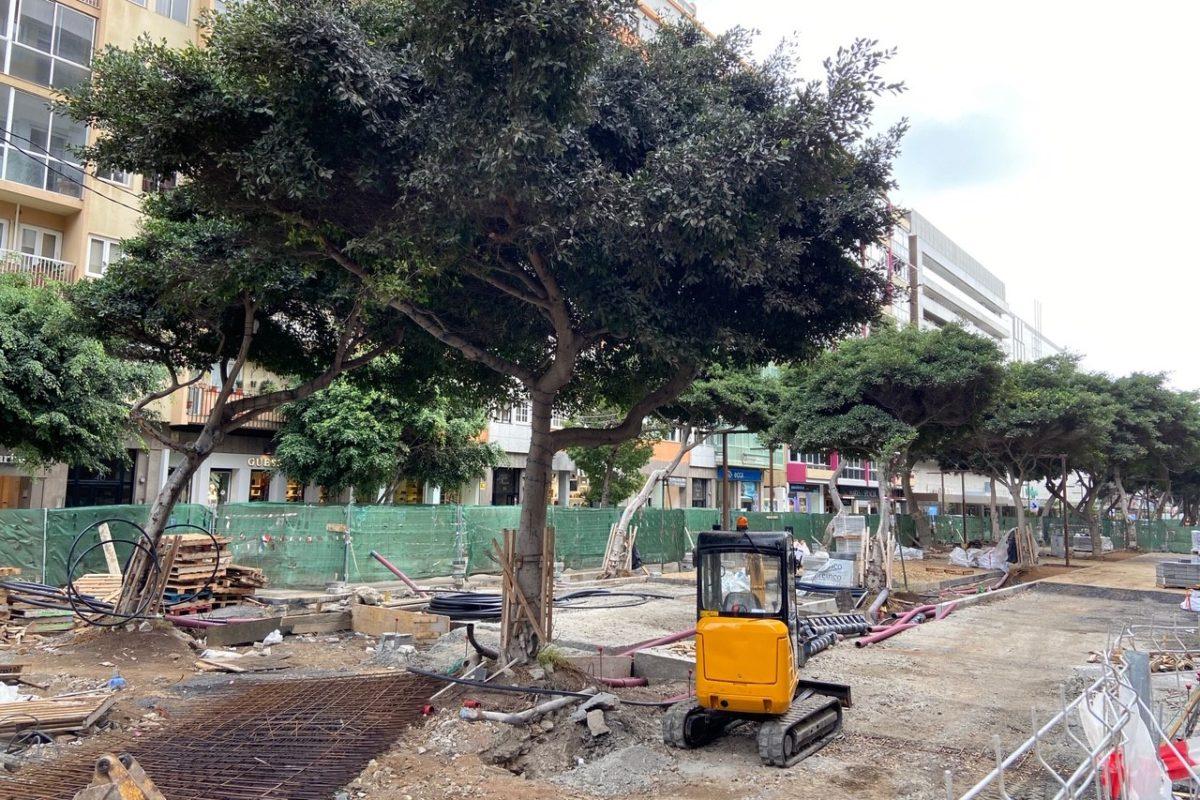 """Luzardo advierte de que los retrasos y molestias por """"la pésima gestión"""" de la Metroguagua bordean """"el límite de la paciencia"""" de los vecinos"""