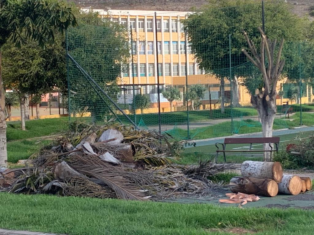 Luzardo acusa a Hidalgo de empezar el recorte del Parque de Las Rehoyas en pleno confinamiento para evitar las críticas y manifestaciones vecinales